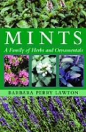 Mints : A Family Of Herbs & Ornamentals
