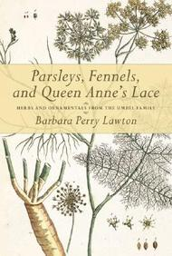 Parsleys, Fennels, And Queen Anne's Lace: Herbs And Ornamentals From The Umbel Family