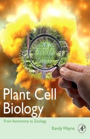 Plant Cell Biology - From Astronomy To Zoology