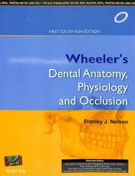 Wheeler'S Dental Anatomy Physiology & Occlusion