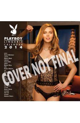 Cal 2015-Playboy Lingerie Wall: Playboy Lingerie