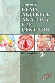 Netters Head & Neck Anatomy For Dentistry