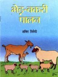 Bhed-Bakri Palan