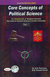 book Principles of Politics: A Rational