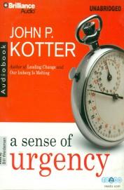 A Sense of Urgency (Audio Book)