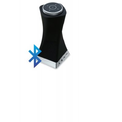 Neptune BT With NFC Speaker (Black)