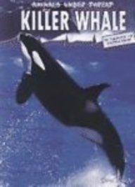 Killer Whale price comparison at Flipkart, Amazon, Crossword, Uread, Bookadda, Landmark, Homeshop18