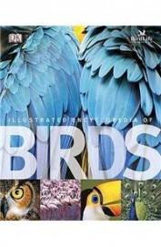 Illustrated Ency Of Birds