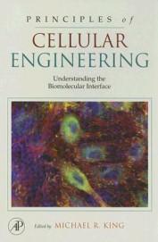 Principles Of Cellular Engineering Understanding The Biomolecular Interface