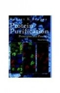 Protein Purification Principles & Practice