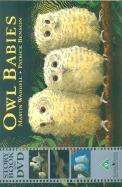 Owl Babies W/Cd
