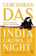India Grows At Night : A Liberal Case For A Strong State