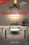 Boundless Energy - 52 Brilliant Ideas For          Recapturing Your Bounce