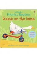 Usborne Phonics Readers Goose On The Loose