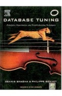 Database Tuning Principles Experiments &          Troubleshooting Techniques