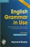 English Grammar In Use WCd