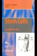 Stem Cells From Hydra To Man