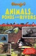 Animals In Ponds & Rivers - Giocage