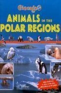 Animals In The Polar Regions - Giocage