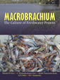 Macrobrachium The Culture Of Freshwat