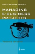 Managing E Business Projects 99 Key Success       Factors