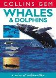 Whales & Dolphins (Collins Gem)