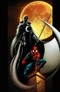 Ultimate Spider Man Warriors Vol 14