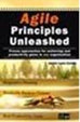 Agile Principles Unleashed: Proven Approaches for Achieving Real Productivity Gains in Any Organization
