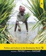 Politics And Culture In The Developing World /  Edition 5