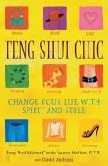 Feng Shui Vhic