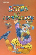 Fun & Learn Birds & Copy Colour - Two In One